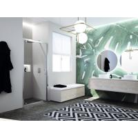 Porte de douche pivotante cadrée Paama