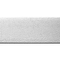 Chant ABS - rouleau de 150 m - dimensions 23 x 0,8 mm