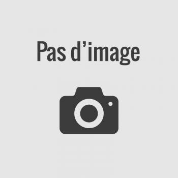 Chiffons de nettoyage industriel gris - Handy Box W7 Tork
